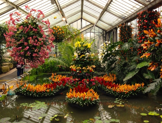 kewgardensorchids